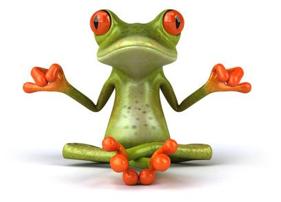 La méditation : savez-vous méditer ? aimez-vous méditer ?  Grenouille_meditation